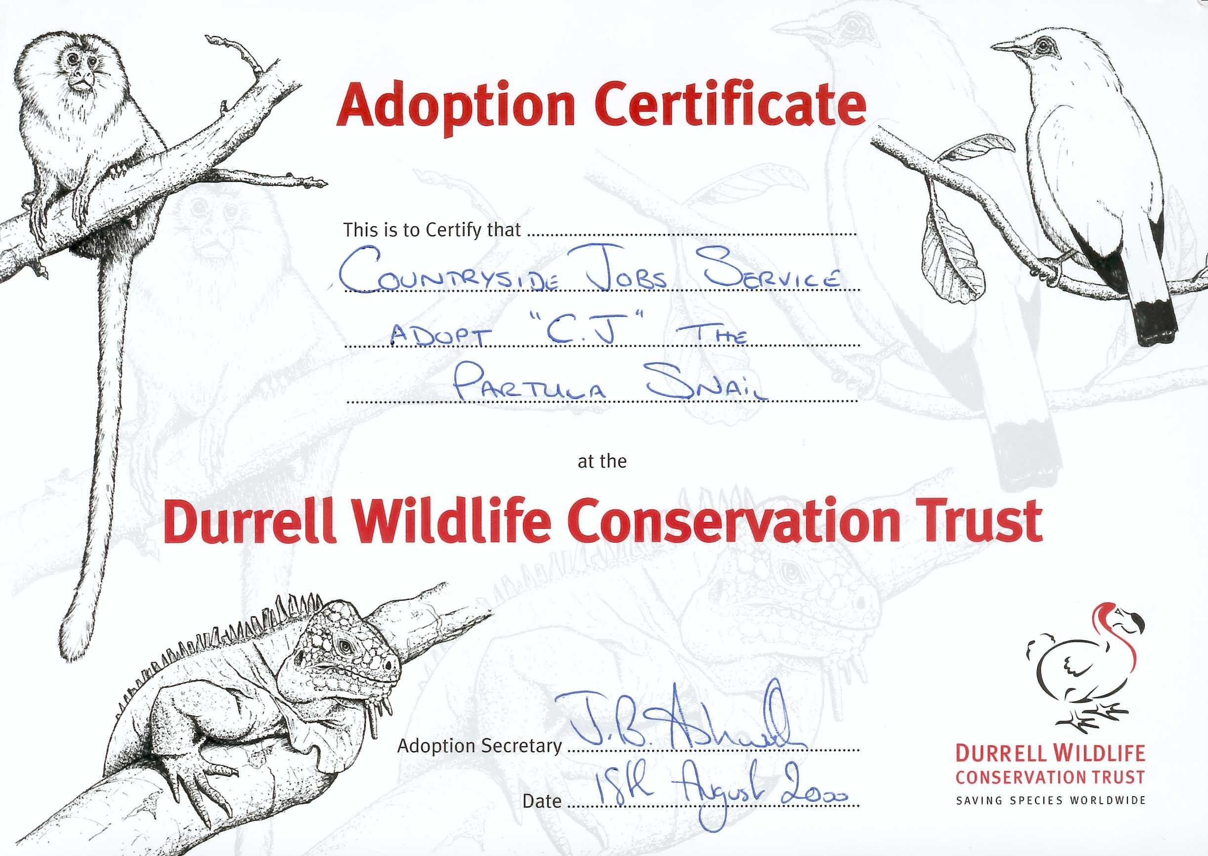 Cj Snail Adoption Certificate