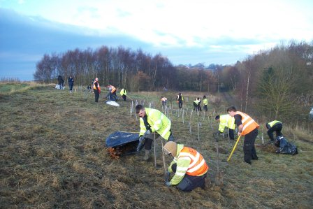 Volunteers dig in planting trees at Silverdale Country Park  (Andrew Hunt, Park Ranger Silverdale)