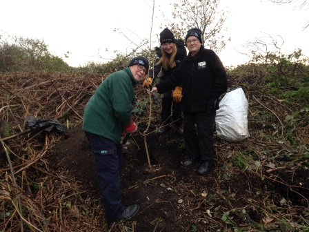 Maurice Bond, Dawn Clayton (Casual Countryside Assistant) and Brenda  Chanter , Lee Valley Conservation Volunteers tree planting between  Walthamstow Marsh and Leyton Marsh (Eamonn Lawlor, Ranger)