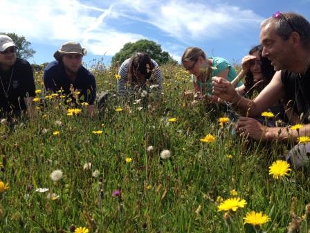 Staff and trainees enjoy National Vegetation Classification training at  Kingcombe, Dorset (R Janes)