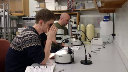 Johnny Pescod and Mark Pritchard gain hands on training in microscope use  © Catrin Watkin