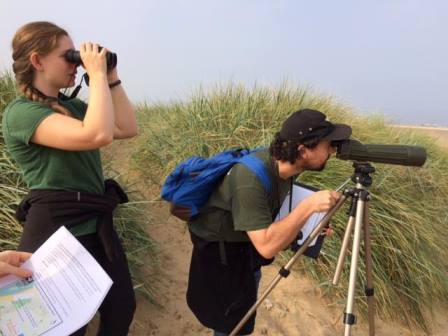 Trainees Molly and Tony survey Sandwich Terns on the Sefton Coast  © Cheryl Knott