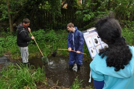GCSE students pond dipping at St. Paul's Community School.  (H. Gregory, NAEE)