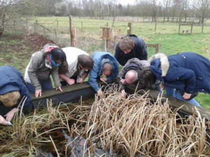 Soil mesofauna course (Charlie Bell)