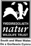 logo: Wildlife Trust South & West Wales