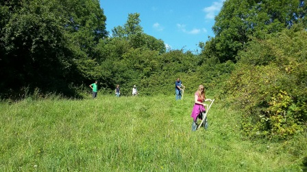 Volunteers scything the wildflower meadow at Elizabeth and Rowe  Harding Nature Reserve as part of the Clean Cut Gower Project  (Rose Revera)