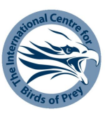 Logo: International Centre for Birds of Prey