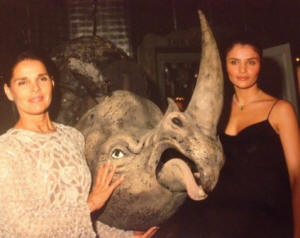 Ali McGraw, Helena Christensen and Martin  dressed as rhino raising funds for international  conservation (Tim Graham of Corbis Images)