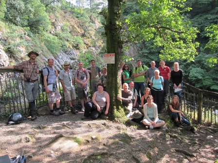 MSc students worked closely with various agencies on a study tour to  complete important invasive species monitoring and condition  assessment in an ancient woodland in north Wales.  (Dr James Walmsley)