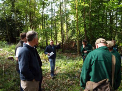The Woodland Trust can offer advice and support for anyone  interested in ancient woodland restoration.  (Jim Smith-Wright/WTML)