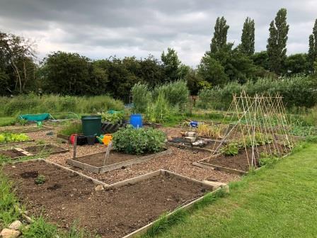 Community garden (Groundwork)