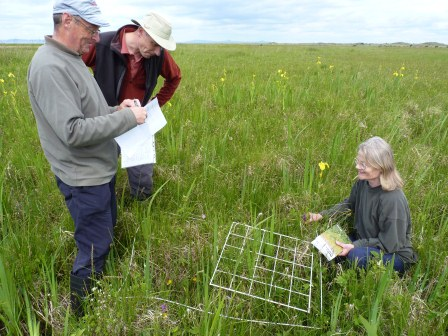 Volunteers plant surveying (East Lothian Council)