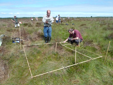 Volunteers Surveying (P Bowyer)