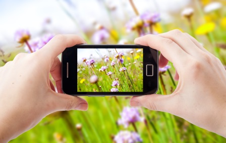 Using mobile phones for nature recording