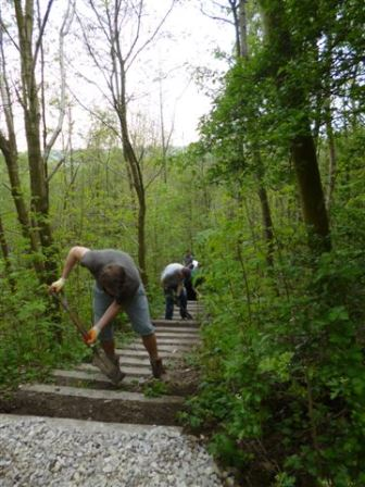 Employee Action Day at Newlands Salford (TCV)