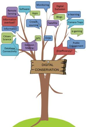 Multidisciplinary dimensions of Digital Conservation