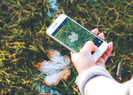 You can now take a very good photograph with your phone  (Photo by Maria Shanina on Unsplash)