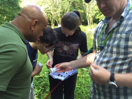 Dani (middle) on a Bumblebee Survey in the Park  (Jess Wharf)