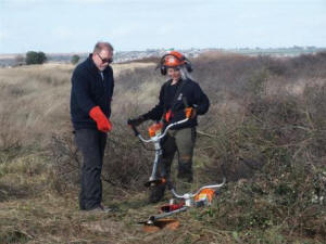 Volunteers clearing scrub at Sandwich & Pegwell Bay (© Dee Govan)