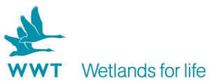 Logo: Wildfowl and Wetlands Trust