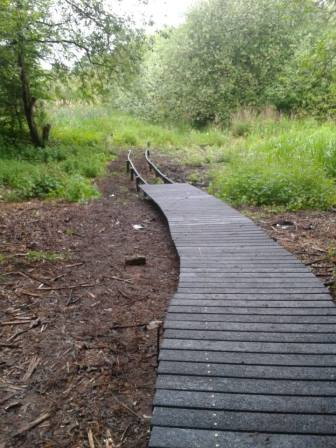 How to put in a boardwalk was just one of the many things learnt (Beth Aucott)