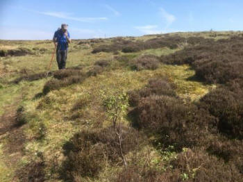 RSPB Dove Stone Nature Reserve (Rewilding Britain)