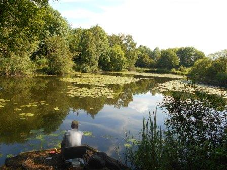 Kingsbury Water Park Pine Pool (Warwickshire County Council)