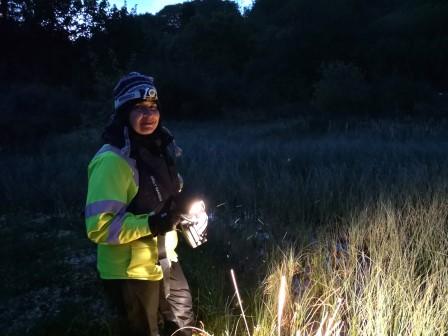 Claudia Gebhardt (Principal Ecologist) Great Crested Newt Surveys © Caledonian Conservation Ltd