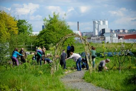 Urban Roots community growing project in Toryglen (Green Action Trust)