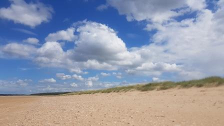 Holkham's dunes (Andy Bloomfield)