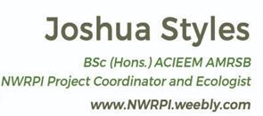 Logo: Joshua Styles
