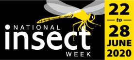 Logo: National Insect Week