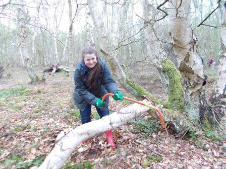 Volunteer at Roydon Common (Norfolk Wildlife Trust)
