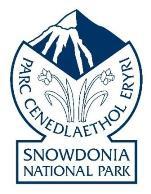 Logo: Snowdonia National Park