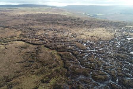 Fleet Moss from the air - you can clearly see the grips as pairs of parallel lines (Alistair Lockhart)