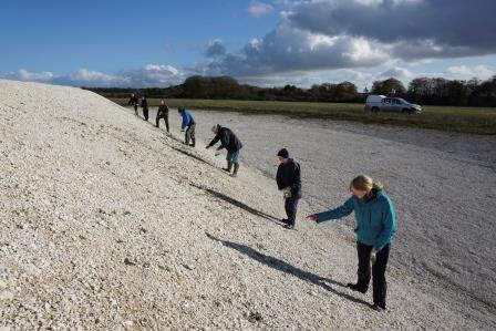 Volunteers sowing wildflower seeds on Butterfly Bank, RSPB Winterbourne Downs Nature Reserve, Wiltshire, November 2015 (Patrick Cashman)