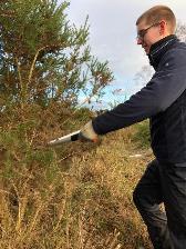 Image: Niall Provan cutting back