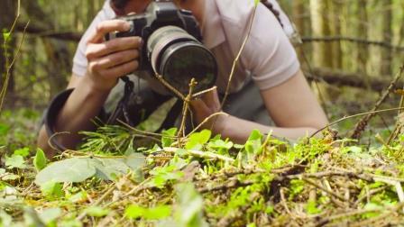 person using a camera (Shutterstock)