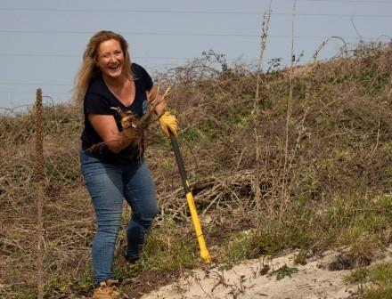 Volunteers have been assisting in scrub and invasive species removal (Ellie Chidgey)
