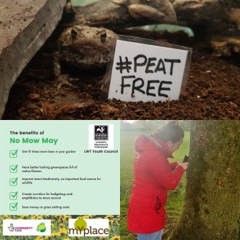 Youth Council member Tasha getting involved in the Peat Free, Now Mow May and City Nature Challenge (Tasha Savage)