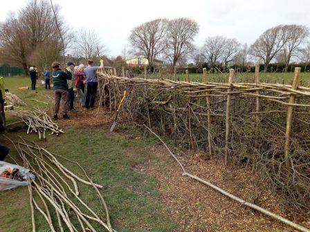 Brighton and Hove City Park Volunteers Creating a hedge border ©BrightonAndHoveCityParkVolunteers