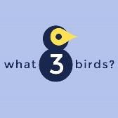 Logo: What3birds?