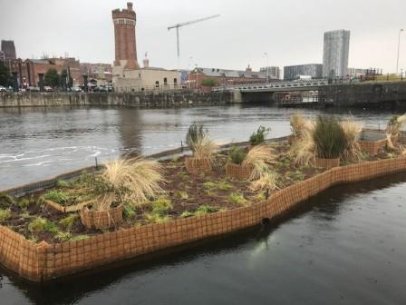 Floating Ecosystem Island, Wapping Dock, Liverpool (Juliet Staples, Liverpool City Council)
