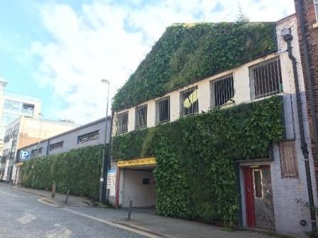 Living Green Wall, Parr Street, Liverpool (Juliet Staples, Liverpool City Council)