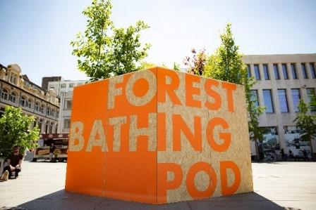 Mobile Forest, Williamson Square, Liverpool (BCA Landscape)