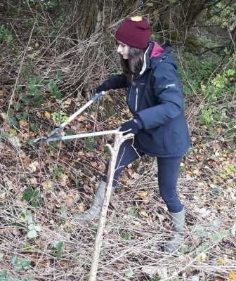 Apprentice using a lopper to clear scrub (Yorkshire Dales Millennium Trust)