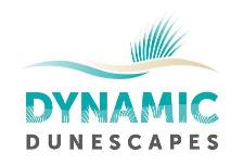 Logo: Dynamic Dunescapes