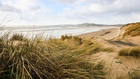 Baglan Burrows; one of the project's dune sites in Wales. Image: Emma Brisdion