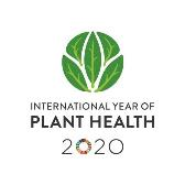 Logo: Year of Plant Health 2020