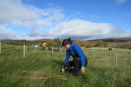 Tree planting on Schiehallion (Liz Auty / JMT)